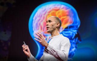 Кому на самом деле ПОДЧИНЯЕТСЯ мозг? Ваш мозг СОЗДАЕТ Вашу реальность!